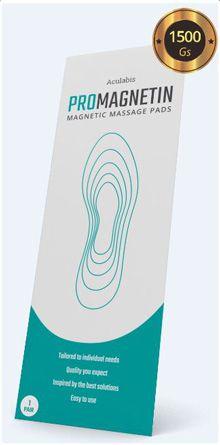 De unde se pot cumpăra inserțiile magnetice Promagnetin